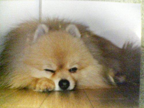 The profile image of nanfji