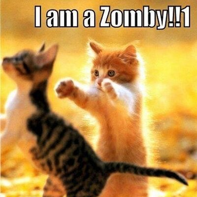 DefinitelyNotRyan ( ZombieSage)  fb61a4375