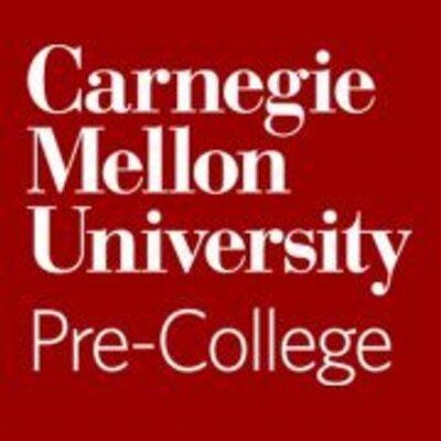 Image result for carnegie mellon pre college