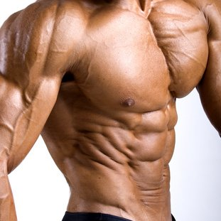 muscle building supplements walmart