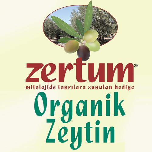 @ZertumZeytin
