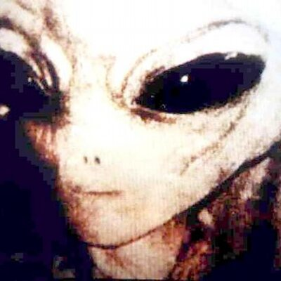 photograph of the face of a living breathing real alien as in UFO's