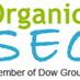 organic seo strategy