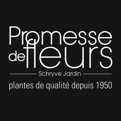 Promesse de fleurs promessedefleur twitter for Promesse de fleurs