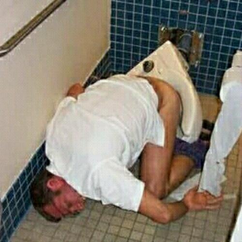 Ass dumb frosh wc