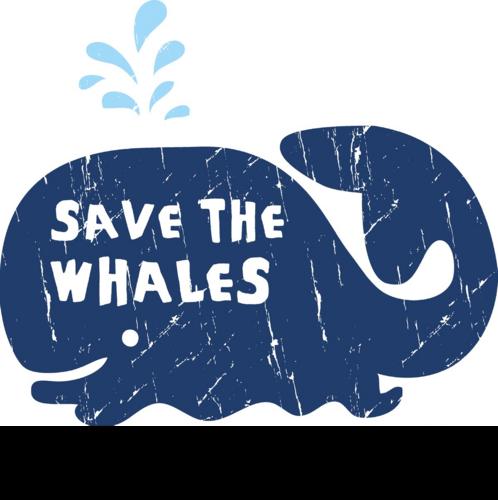 Stop Whaling (@Stop_Whaling) | Twitter Raising English