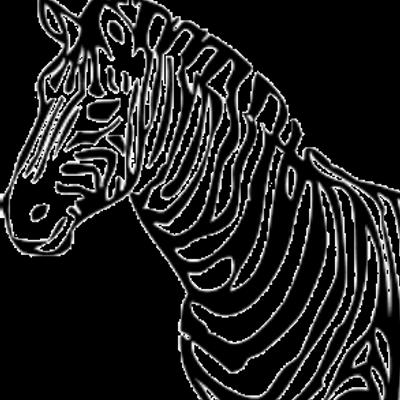 Zebra Technologies (@zebratechy) | Twitter