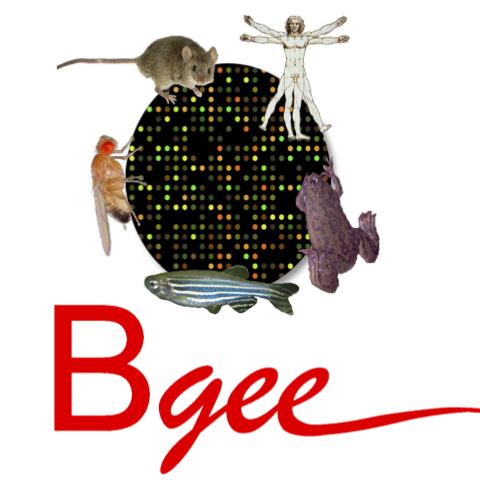 Bgee database
