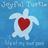 Joyful Turtle