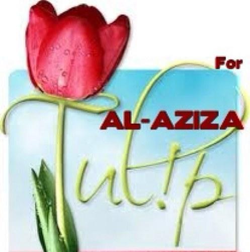 AZIZA AL-MAJID