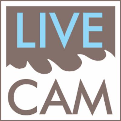 Live cam7