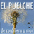 @ElPuelcheChile
