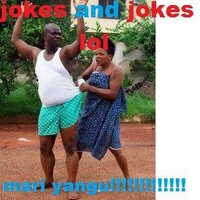 jokes and jokes lol