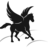 The profile image of PegasusAcademy