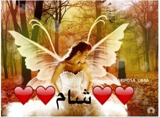 @reemalbawadi