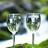 Leavenworth WineTour