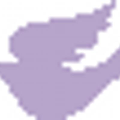 Purple Dove Studio