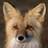 Dynamic Ecology (@DynamicEcology) Twitter profile photo
