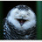 @rupertmurdoch Ah Rupert dear, please use your napkin...you're dribbling again