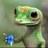 shakeygecko
