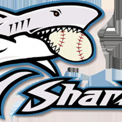 Sharks Baseball (@sharksoficial) | Twitter