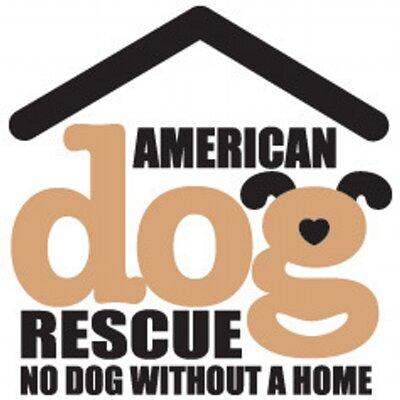 Dallas Dog Rescue Facebook