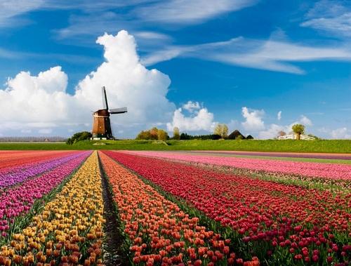 DutchSpace