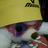 genuine_tatsu