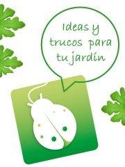 Crea tu jard n creatujardin twitter for Crea tu jardin