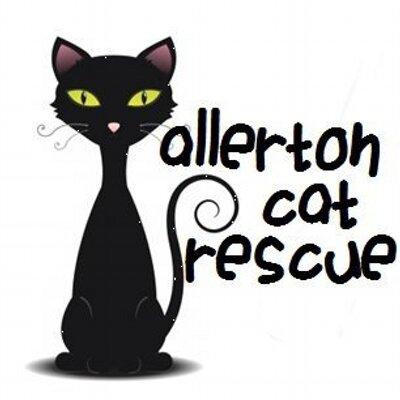 Allerton Cat Rescue