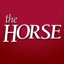 The Horse Social Profile