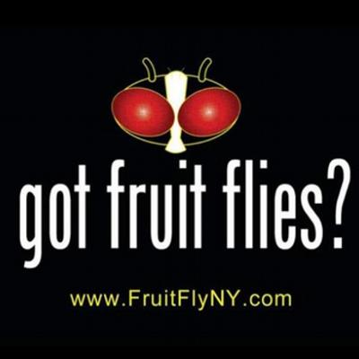 Fruit Fly Bar Pro Ny Fruitflyny Twitter