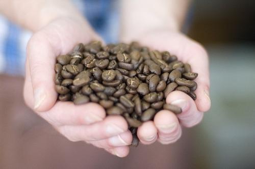 Coffee, Chocolate & Tea