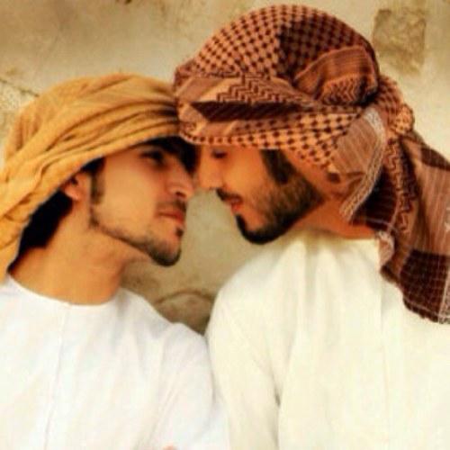 arabian tails tailsofarabia twitter