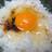 フィリピンで卵かけご飯のアイコン