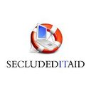 Photo of secludedITaid's Twitter profile avatar