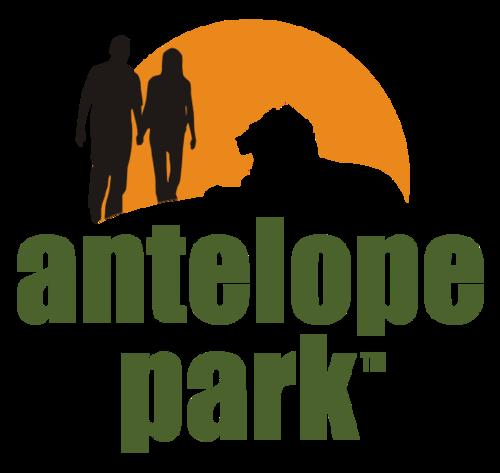 @AntelopePark