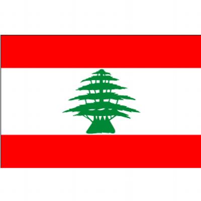 レバノンビザ取得申請代行センター (@visa_lebanon)