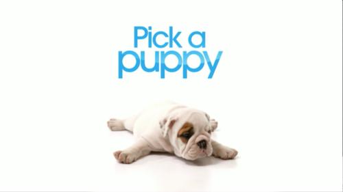 @pick_a_puppy