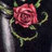 Rose-viviane