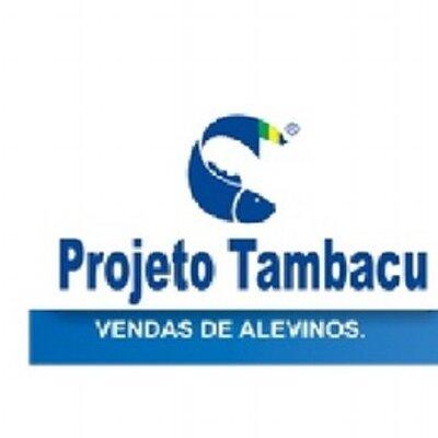 Resultado de imagem para projeto tambacu