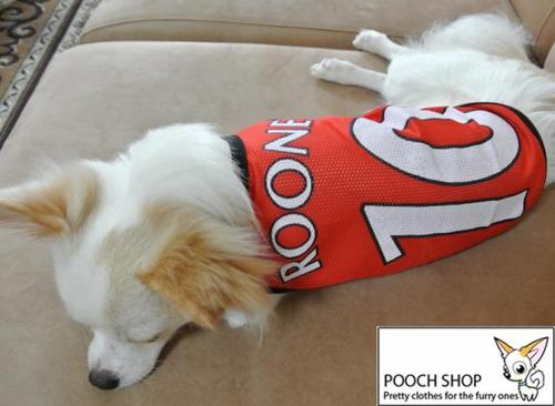 Manchester United Dog Jersey Nike Football Shoes Online