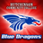Blue Dragon Sports (@bluedragonsport) Twitter profile photo