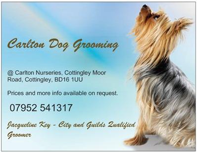 Carlton Dog Grooming