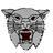 Calallen Football (@CalallenCats) Twitter profile photo