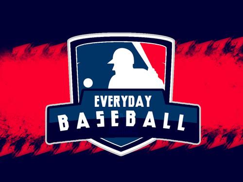 Image result for baseball everyday