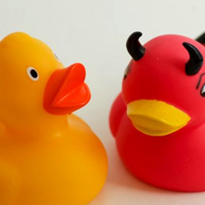 Ducks 400x400
