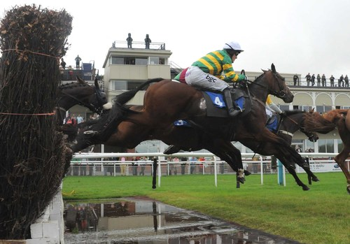 Image result for LUDLOW RACES