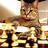 ChessQuotes