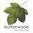 Buttonwood Marketing